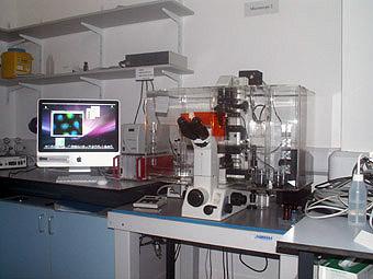 Nikon Widefield Microscope