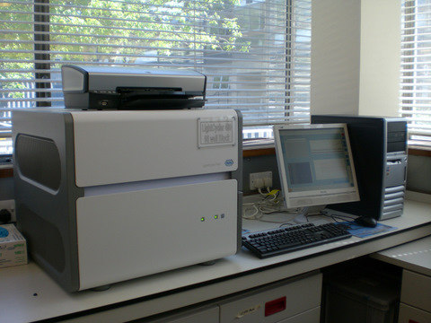 Lightcycler 480 Real Time PCR