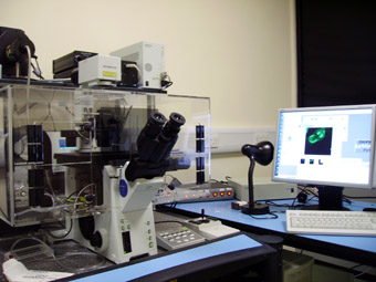 FV1000 confocal laser scanning microscope