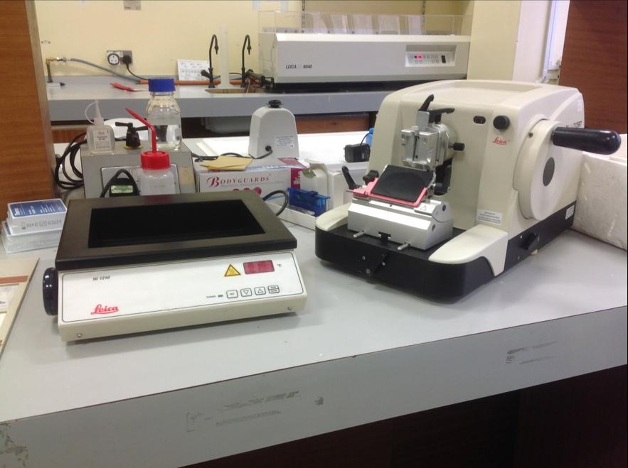 Microtome 2125RT